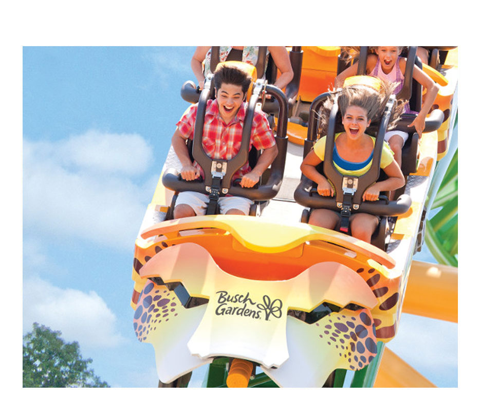 click here to contact us now to find a busch gardens tampa bay package